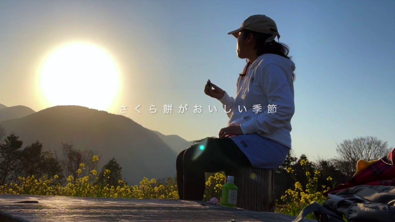 森歩き日記 Vol.19 河村城址 森林セラピーロード