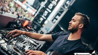 Calvin Harri Back For You One Day Remix Dj Mk