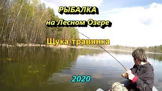 рыбалка на озере Псковская область ловим щуку травянку на воблер вертушку и кружок