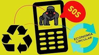 Gorilas en PELIGRO y teléfonos NO reciclados: Una corta historia de ECONOMÍA CIRCULAR