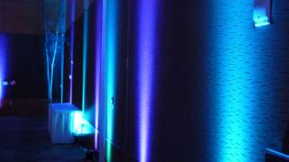 Wedding Reception Venue: DECC. Up lighting by Duluth Event Lighting