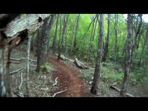 Mountain Biking Maui, Normal Speed, at Makawao Forest Reserve