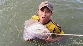 Chày Cá Trong Mương Dính Quái Vật Làm Món Ăn Khủng Lồ.Minh Bẫy Rắn#162