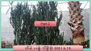 마곡 서울 식물원 pa…