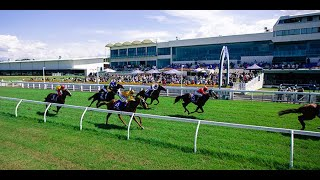 Pro Group Racing - Show Us Your Tips - 8th May 2021 Saturday Preview - Hollindale Stakes Day