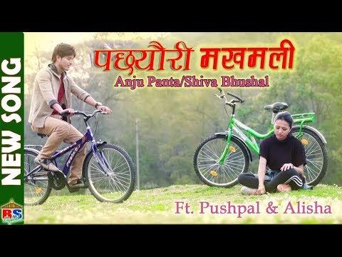 Pachhyauri Makhamali