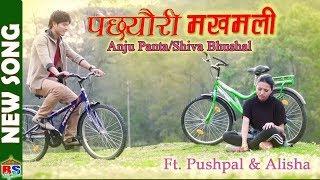 MODERN SONG | PACHHYAURI MAKHAMALI  | by Anju Panta/Shiva Bhusal | Ft. Pushpall/Alisha Rai