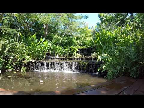 Bali Waterfall 4K 30 Minutes. Laguna Hotel and Spa Nusa Dua