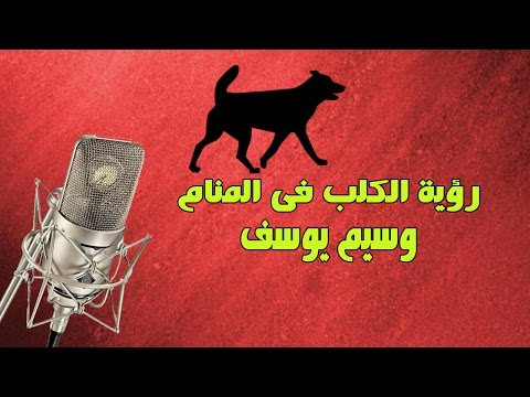 رؤيا الكلب في المنام | الشيخ وسيم يوسف