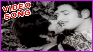 Mansakshi Telugu Superhit Video Song - Krishna Old Hit Songs