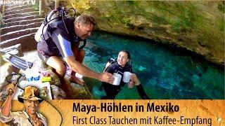 Cenote Chak Moll Mexiko / Yucatan: Tauchen mit krasser Überraschung in der Höhle # 5
