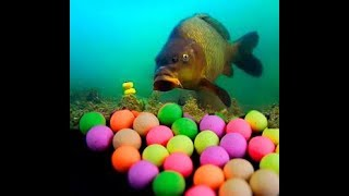 Как видит карп цвета под водой на глубине. / How to see carp colors at a depth.