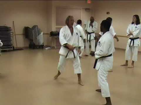 Kumite Drill shift sweep round house