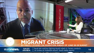 Stefan de Vries talks with euronews about the migrant crisis