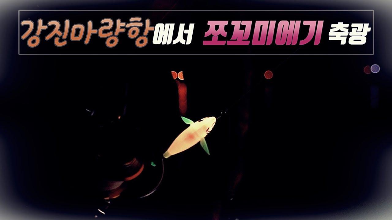 강진마량항 봄갑오징어 짬낚!! / 쪼꼬미에기축광 / 봄갑오징어 / 강진마량항