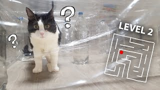Invisible Maze or the Cat !! 3 Levels !!