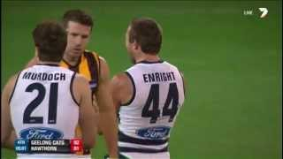 Round 5 AFL - Geelong v Hawthorn Highlights