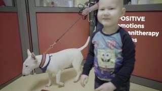 Video The Hospital of Lithuanian University of Health Sciences (LSMU) Kauno klinikos presentation download MP3, 3GP, MP4, WEBM, AVI, FLV Agustus 2018