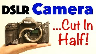 DSLR Camera ...Cut In Half!
