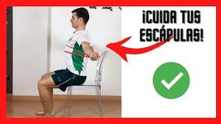 Retracción escapular sentado - Ejercicio para la Espalda
