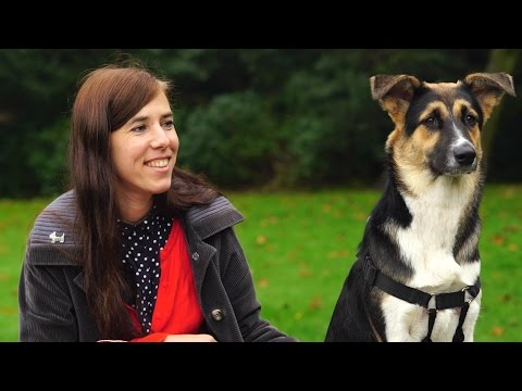 Interview with animal rights philosopher Eva Meijer