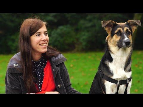 Interview with animal rights philosopher Eva Meijer