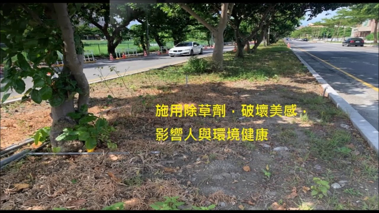 20200810東台灣online花蓮縣非農地禁用除草劑-林蔡毓
