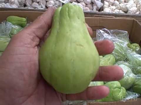 is squash a fruit halos fruit
