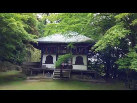 平成29年6月11日(日) 美の京都...