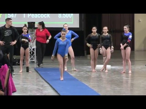 Morgan Hackett Level 9 Kurt Thomas Invitational 2016