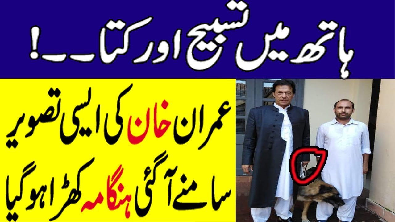 Imran Khan Viral Pic With Dog Got Criticism On Social Media