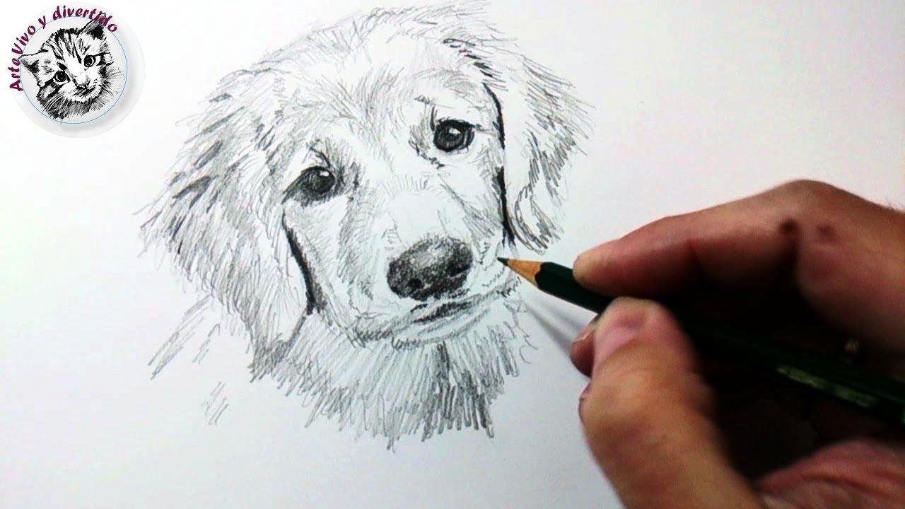 Tecnicas Para Dibujar: Técnicas Y Tips De Dibujo Con Lápiz De Grafito Y Cómo