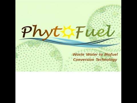 Phytofuel