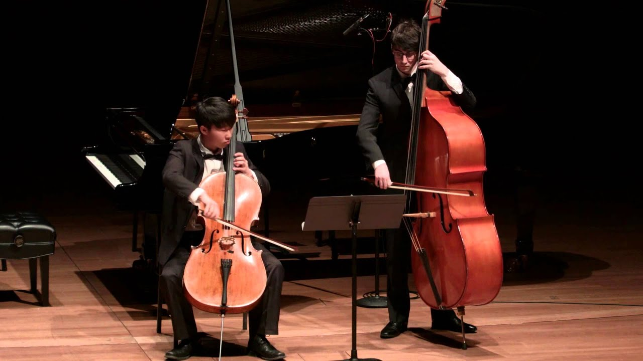 Rossini - Duetto in D major for Cello and Bass - YouTube