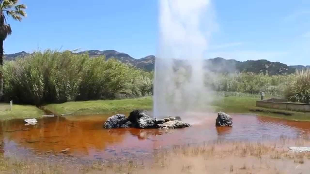 Old Faithful Geyser, Calistoga, California - YouTube