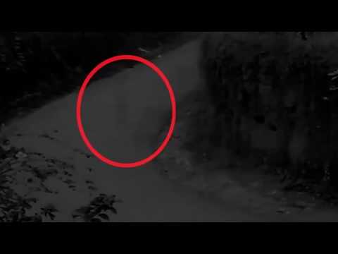 Подборка призраков, призраки среди нас, призраки попавшие на видео 7