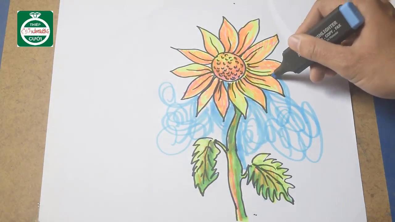how to draw sunflowers/ vẽ tranh hoa hướng dương