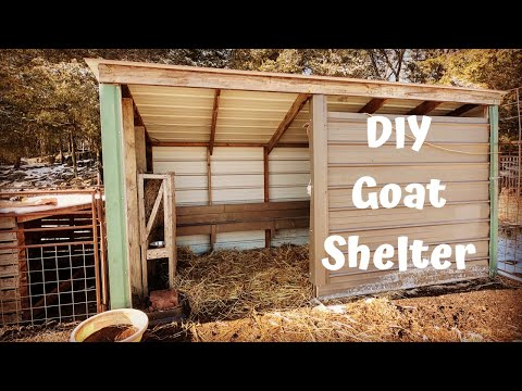 diy-goat-shelter-made-from-recycled-materials!-|-kiko-goats!