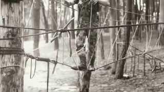 Veteranos C.O.E-81..El Cumial-Orense