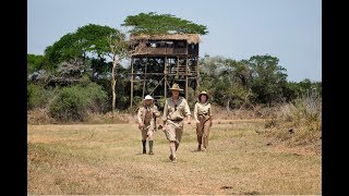 Treetops - The 'Crown' Royal Safari Lodge