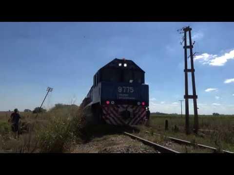 Tren Belgrano Cargas 5002 por Santa Lucía