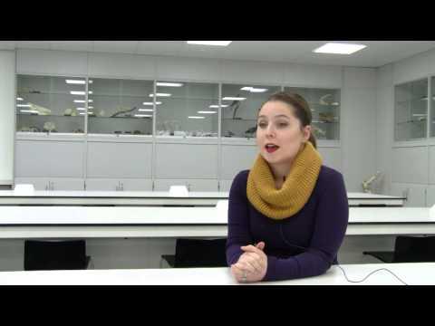 Human Biology internship at the University of Derby