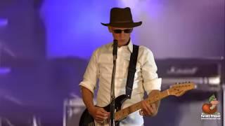 HIS BRAIN (Parody of Eric Clapton) | Don Caron