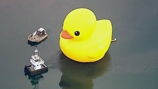 Gambar cover Taxpayers frustrated over cost of Toronto's big rubber duck