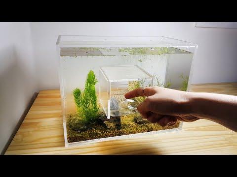 How to Make Hole in the Middle Acrylic Aquarium, Nano (Water Flea Tank)