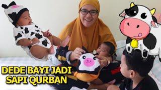 Dede Una Jadi Sapi Qurban Pakai Jumpsuit Bayi Karakter Hewan Lucu !