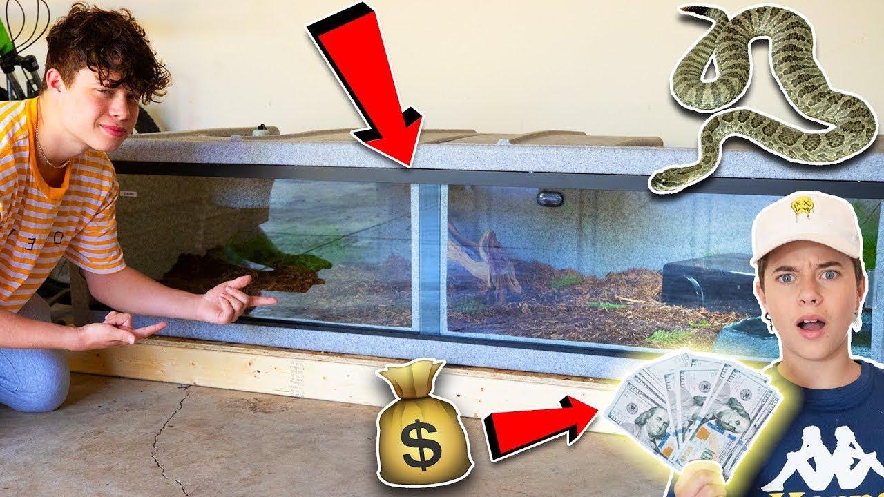 Buying a $2,000 SNAKE **NEW PET REVEAL** | Jakob Magnus (ft. Gavin Magnus)