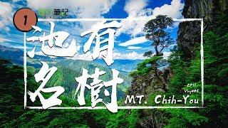 【池有名樹】武陵四秀中最美的一顆樹!可讓人重回初戀的感覺 (大小霸+武陵四秀)   /台灣百岳100 Peaks of TaiwanEP11 Vlog#46