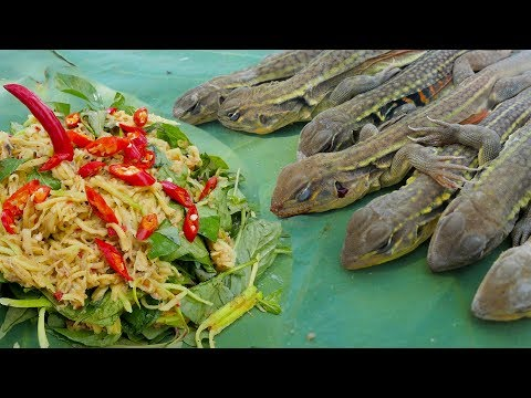 Super Quick Survival Butterfly Lizard Trap - Catch n Cook Lizard  - Traditional Cambodia  Food