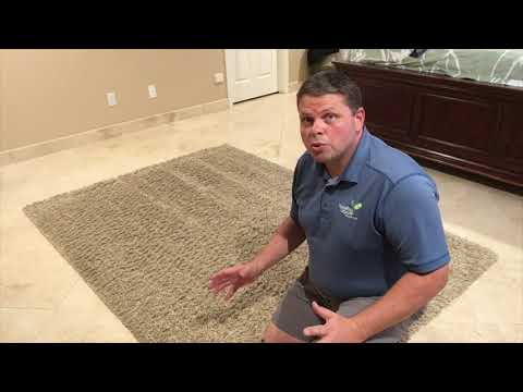 How To Properly Clean Area Rugs On Site